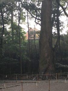 Naiku Main Shrine